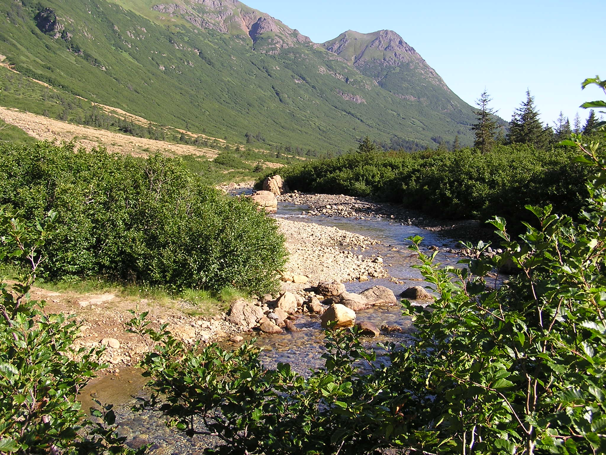 The upper Windy River